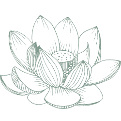 Lotus Flower Class Pass